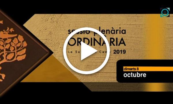 Ple ordinari 08/10/2019 (Part 1)