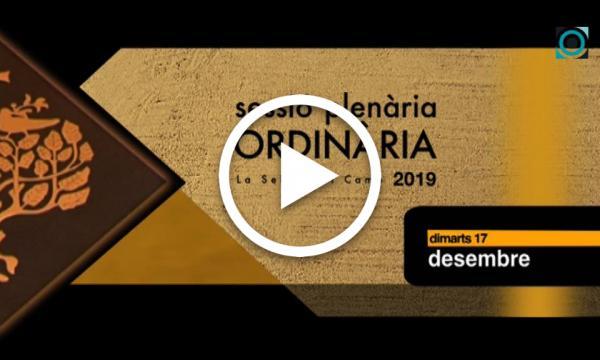 Ple ordinari 17/12/2019 (Part 2)