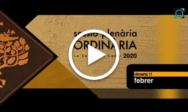 Ple ordinari 11/02/2020 (Part 1)