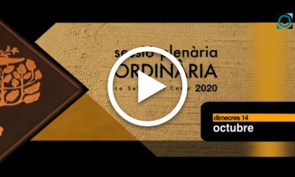 Ple ordinari 14/10/2020 (Part 1)