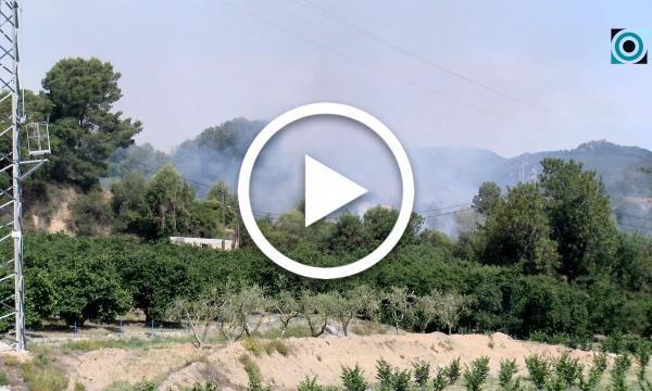 Alerta màxima per un foc forestal intencionat al camí del Rec