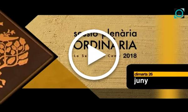 Ple ordinari 26/06/2018 (Part 1)