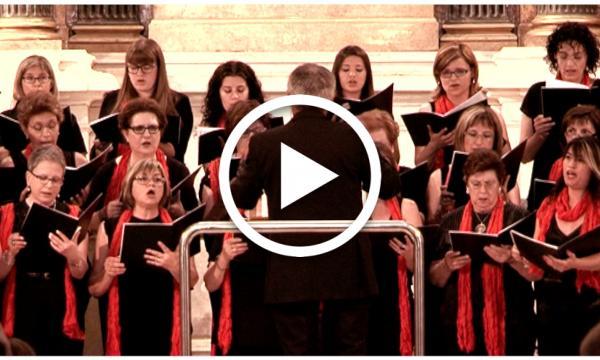 Segell Selvatà: Schola Cantorum (Capítol 25)