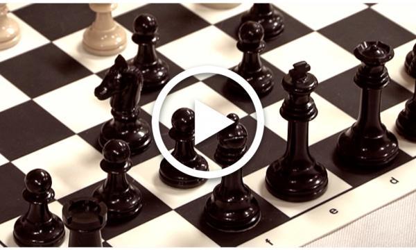 Segell Selvatà: Club Escacs la Selva (Capítol 26)